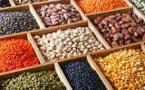 قیمت حبوبات در میادین
