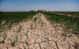 بخش کشاورزی ۴٠ میلیارد مترمکعب آب اضافه مصرف می کند